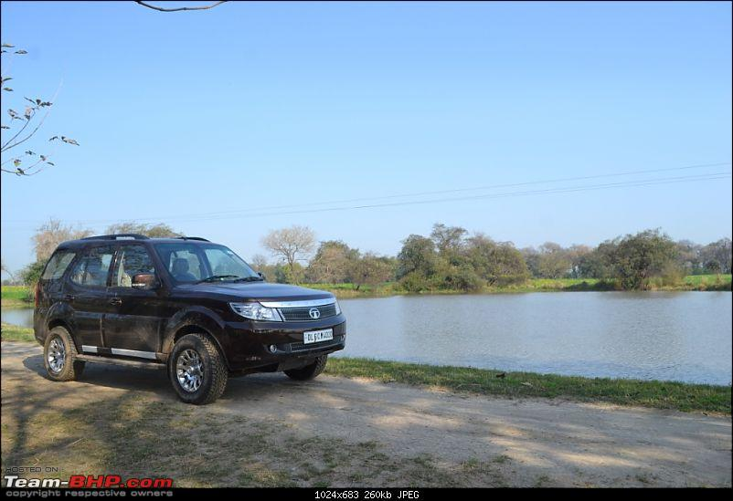 TATA Safari Storme EX Urban Bronze-Buying Experience Initial Ownership Report-dsc_1506.jpg