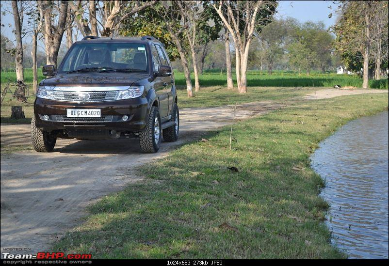 TATA Safari Storme EX Urban Bronze-Buying Experience Initial Ownership Report-dsc_1510.jpg