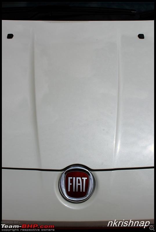 2014 Fiat Punto Evo - Test Drive & Review-img_5534.jpg