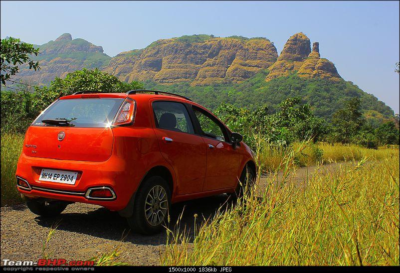 A love affair: Fiat Punto Evo 1.3L MJD. EDIT - sold!-punto2.jpg