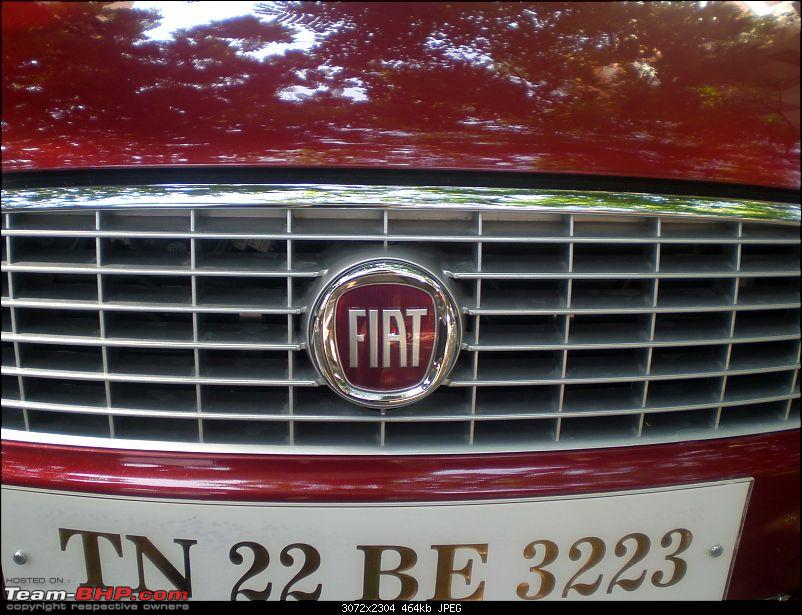 Fiat Linea - 2nd Birthday !!!-p4280059.jpg