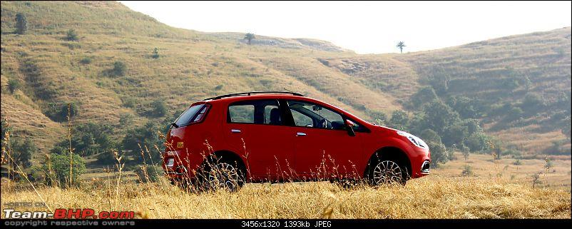 A love affair: Fiat Punto Evo 1.3L MJD. EDIT - sold!-partingshot.jpg