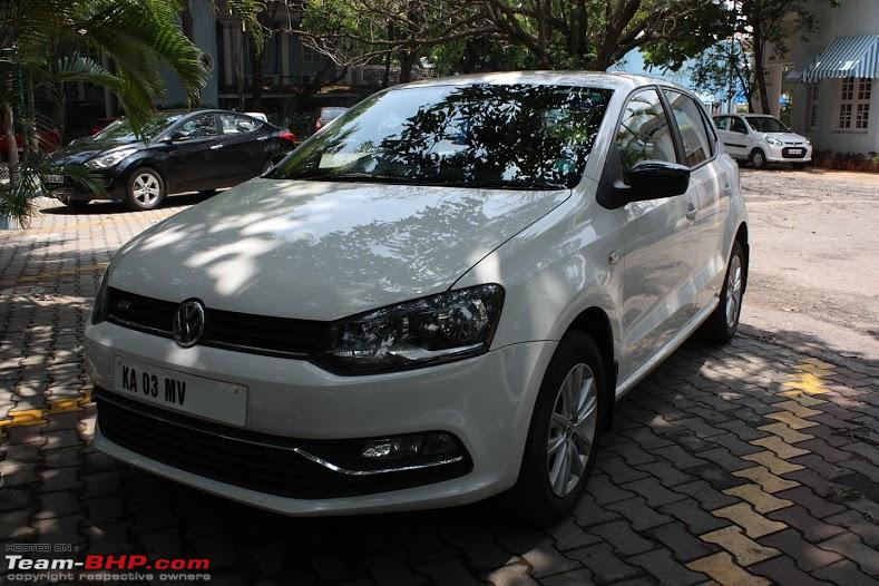 Name:  polo front three quarters 3.JPG