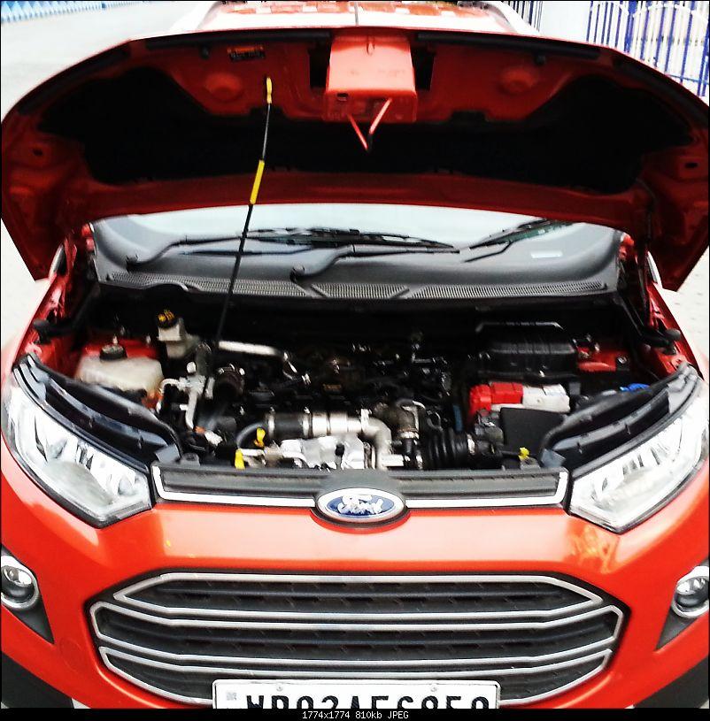 American Beauty - My Ford EcoSport Titanium 1.5 Diesel-img_20150523_223037.jpg