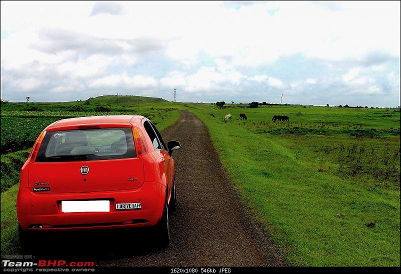 'The Red' is home: Fiat Punto 1.3 MJD Dynamic. EDIT: 30,000 kms up!-img_0071-large.jpg