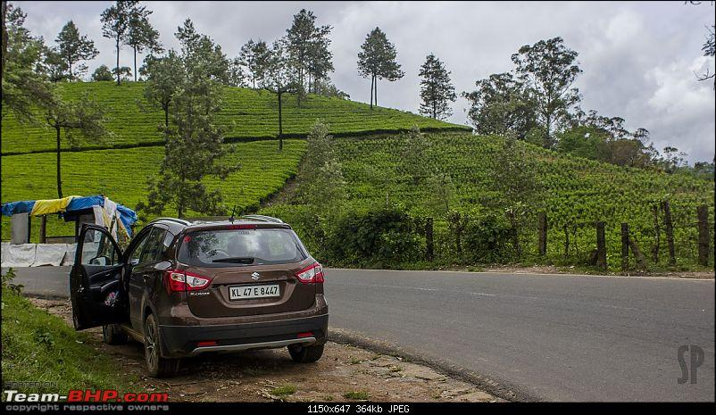 My Brown Little Hippo: Maruti S-Cross DDiS 200 Alpha-4.jpg