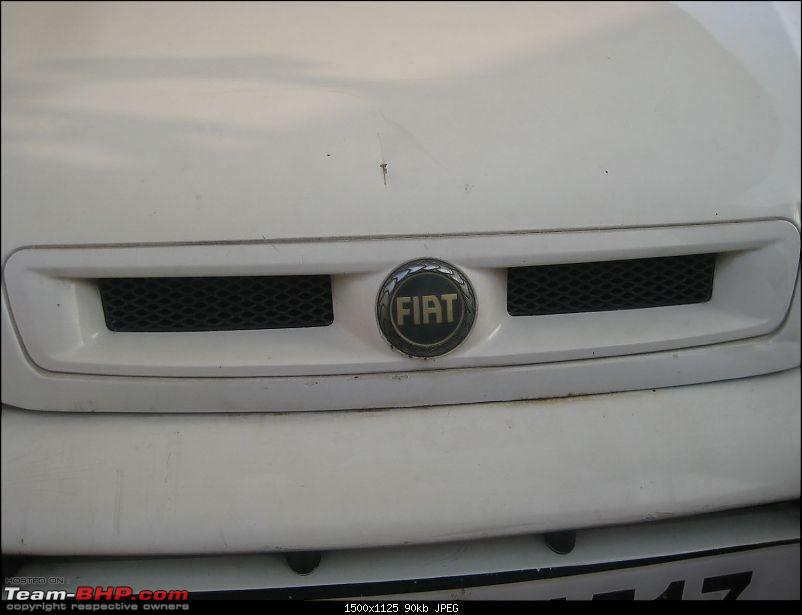 2004 Fiat Palio 1.9 D: The story of my pre-worshipped car-09g-central-gril.jpg