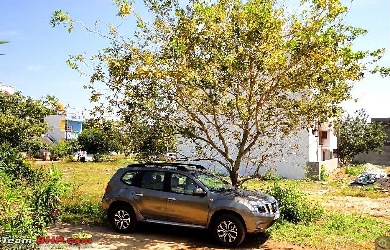 My Nissan Terrano 85 PS-shade.jpg