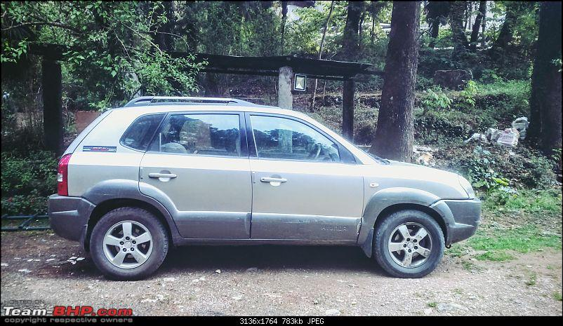 Pre-owned Hyundai Tucson: The initiation of Ms. Tooky-san-dsc_1425.jpg