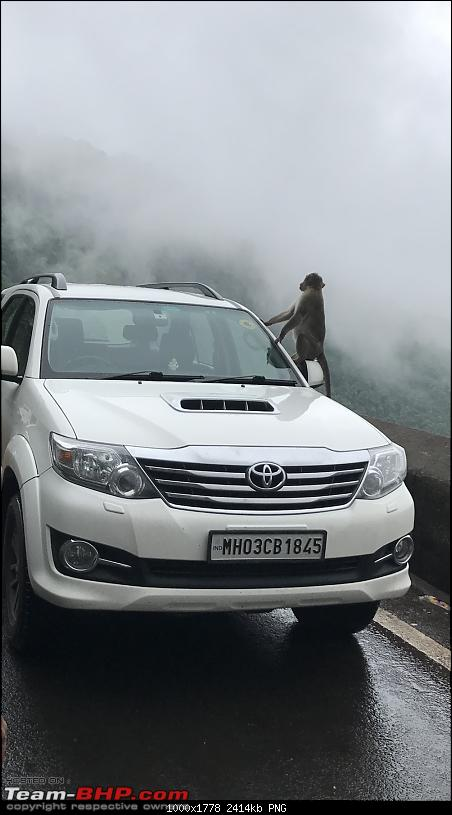 One year with the Toyota Fortuner 4x4 AT : My Furteela Ghonga-img_2883.png