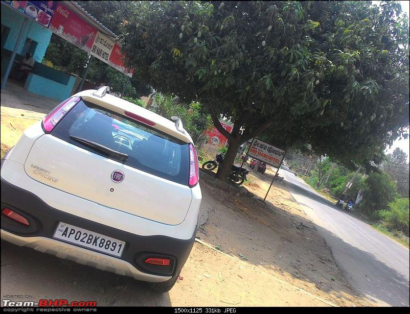 White Scorp: A noob's ownership review of the Fiat Abarth Urban Cross Avventura-ohatch.jpg