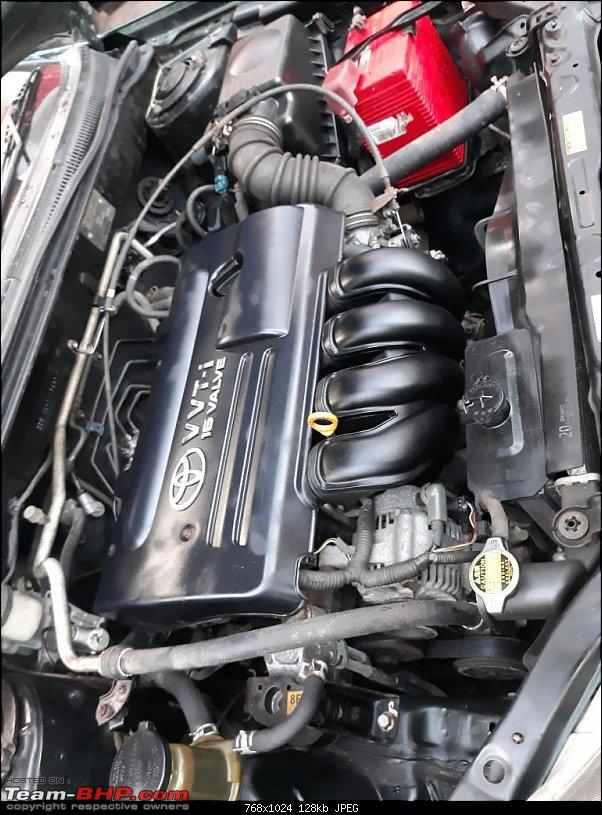 Why did I buy a 12 Year old Toyota Corolla - My experience-engine-bay-after-cleaning.jpg