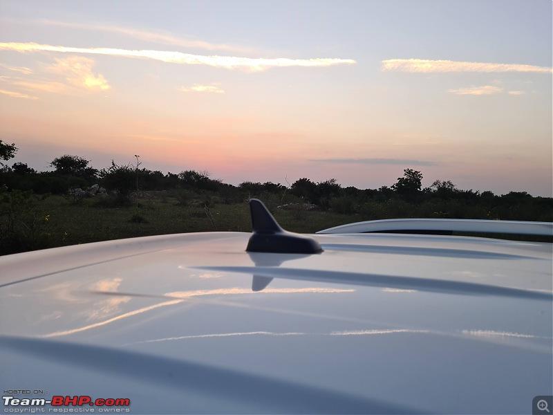 My Volkswagen Tiguan Allspace - Ownership Review & Upkeep-radioantenna.jpg