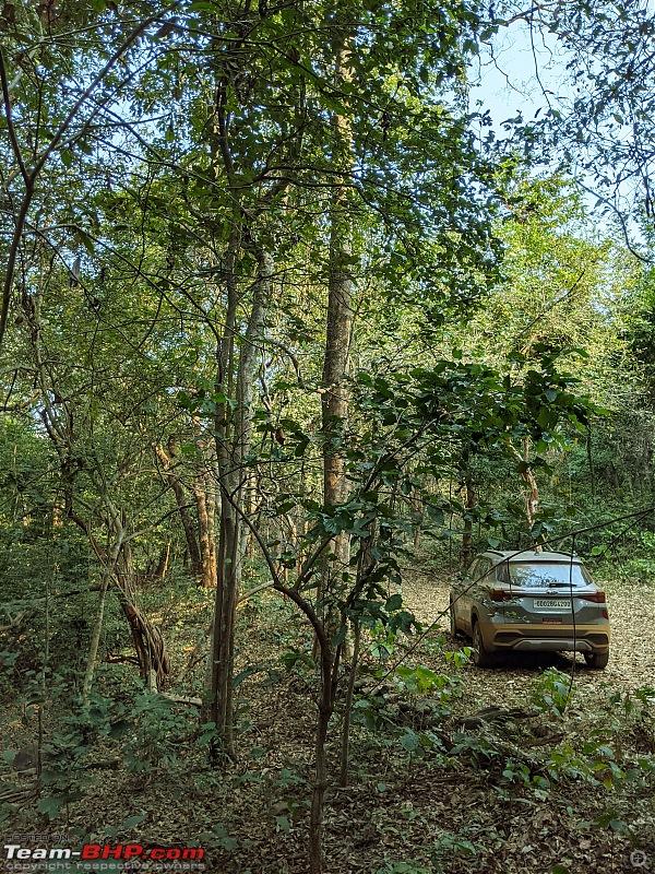 Ownership Review: My Kia Seltos HTK+1.5L Diesel MT (Coyote). EDIT: 20,000 km up-pxl_20210207_031450095.jpg