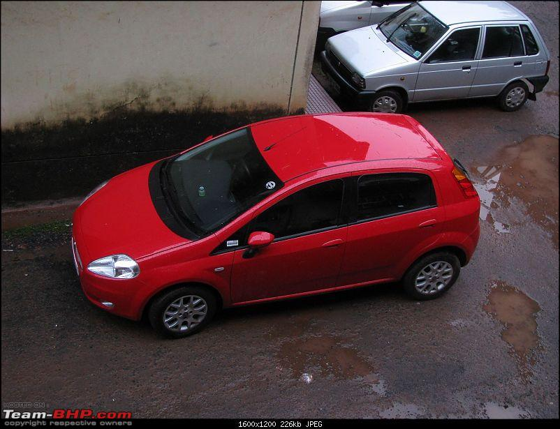 The BOLD, Red and Beautiful is here. (Punto MJD)-tn_picture-030.jpg