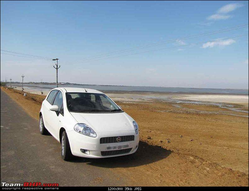 my experience with punto1.4E+ done 3500km-puntofront.jpg