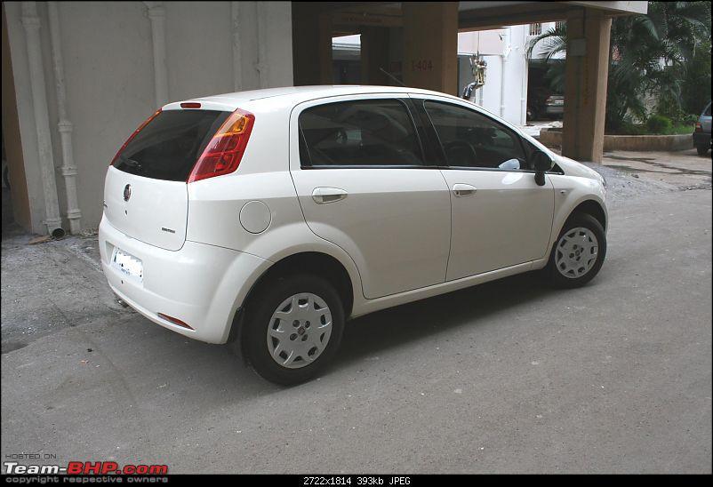 My Punto - MJD E - B White-img_3551a.jpg