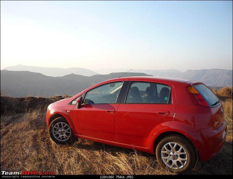 "My Exotica Red Fiat Grande Punto 1.4 aka ""Ponti"" arrives...-p1040742.jpg"