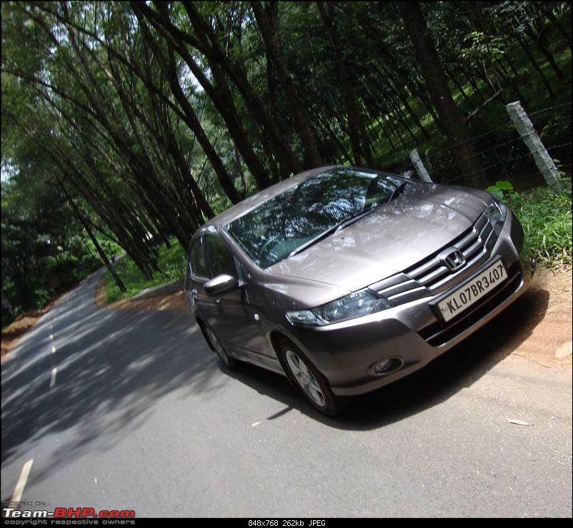 Does anyone buy a Honda City anymore?! Oops! I did-and fell in love with it!!-nymph-again.jpg