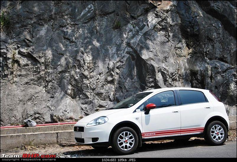 """Pegasus"" – My Winged Stallion; Fiat Punto 90hp-dsc_8387.jpg"