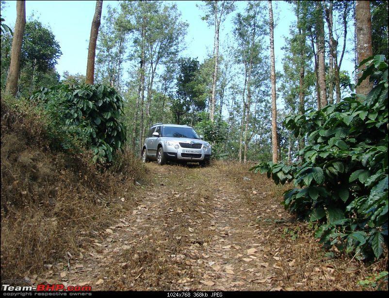 Skoda Yeti@ India (An ownership review)-dsc06915.jpg