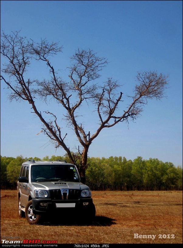 Bringing home the Mahindra Scorpio LX. EDIT : Scorpio finds a new home!-scorpiolx-4.jpg