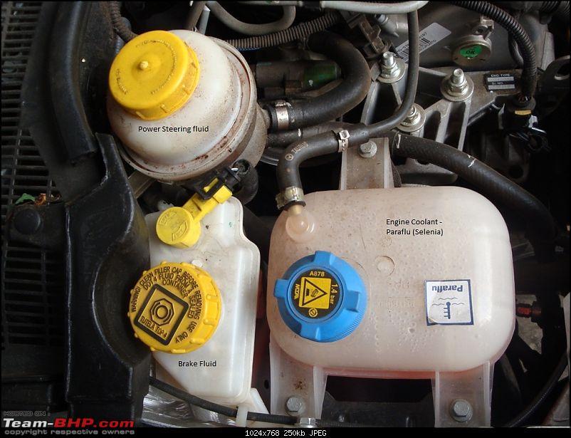 Italiano Bellezza - Fiat Grande Punto 1.3 MJD Emotion. EDIT : 2nd Service update-dsc01899.jpg