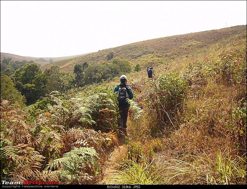 'Xing'ing around ! - Brahmagiri , Irpu falls - A trip and trek...-40.jpg