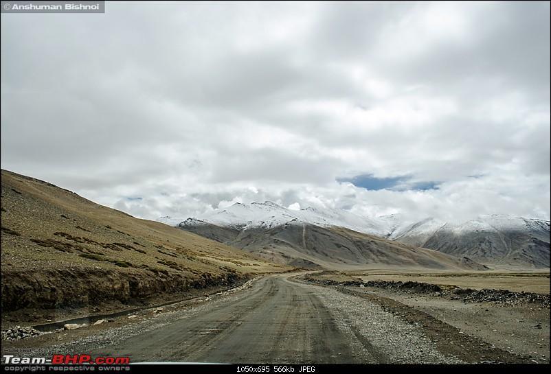 Ladakh in my Laura- Travelogue-dsc_8930.jpg