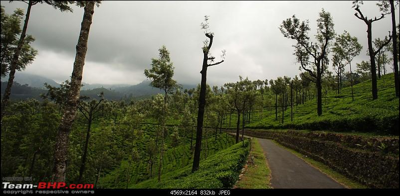 Reflections on Driving addictions - Valparai-63.jpg