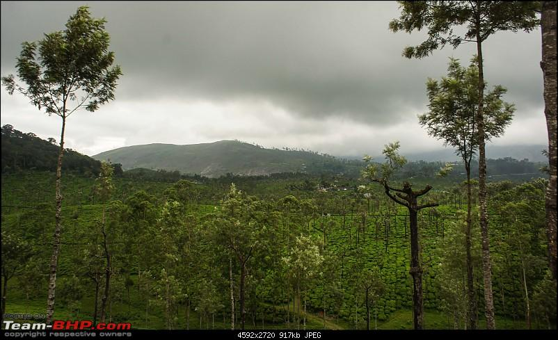 Reflections on Driving addictions - Valparai-64.jpg
