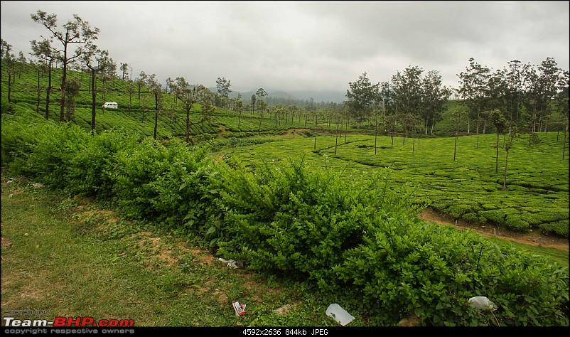 Reflections on Driving addictions - Valparai-73.jpg