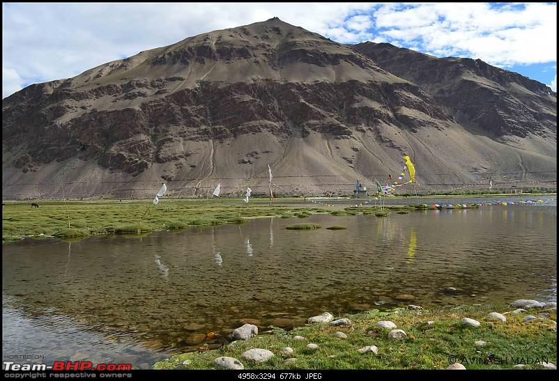 Heights of Paradise - Leh Redefined!-dsc_0497.jpg