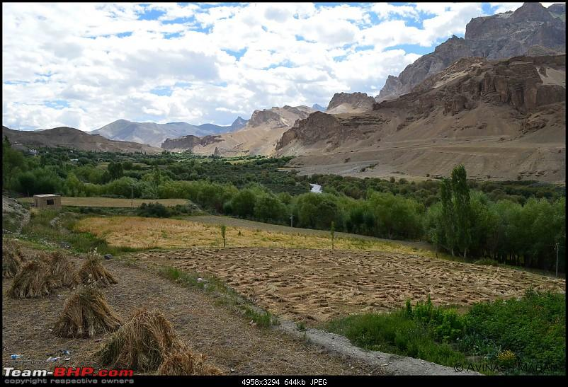 Heights of Paradise - Leh Redefined!-dsc_0010.jpg