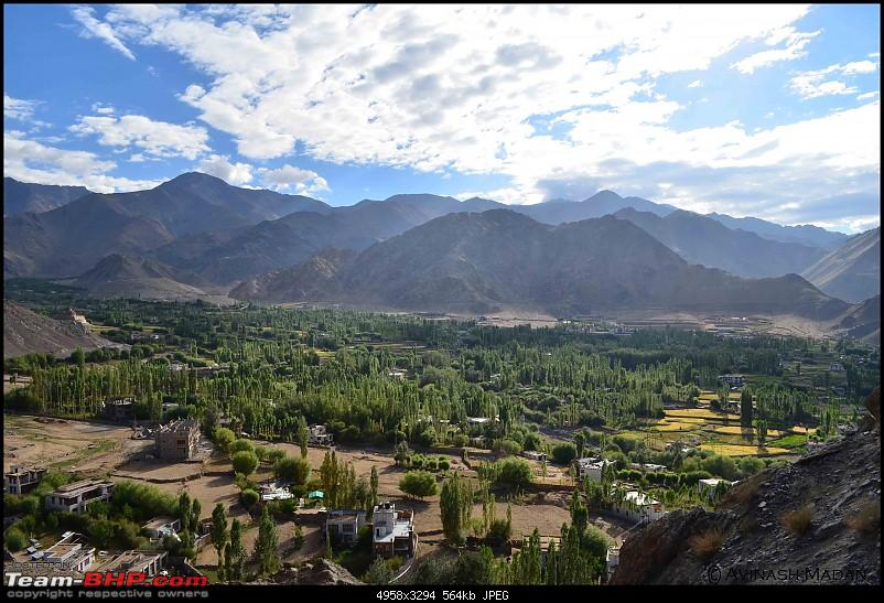 Heights of Paradise - Leh Redefined!-1.jpg