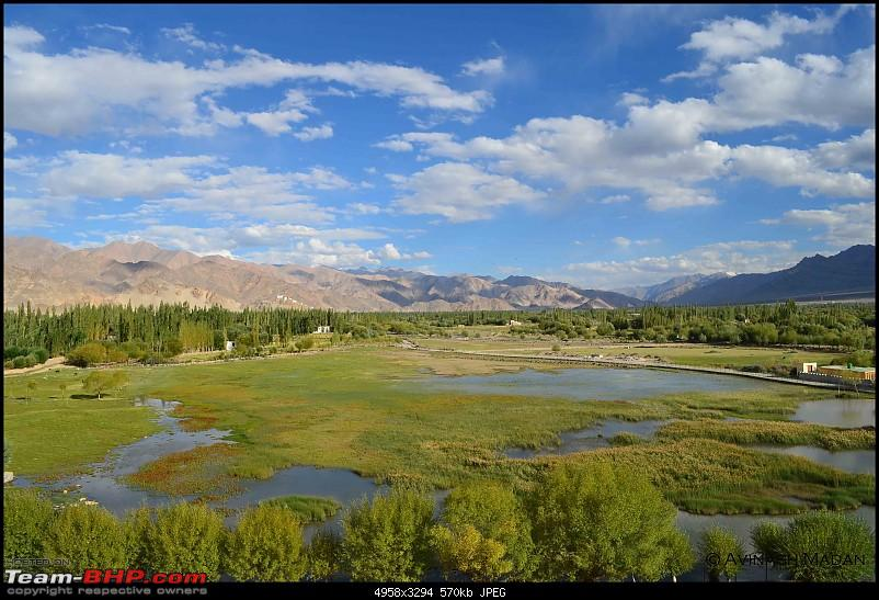 Heights of Paradise - Leh Redefined!-36.jpg