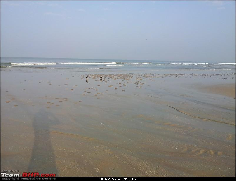 Return to Sun Surf Sand but no Sorpotel - Goa!-benaulim2.jpg