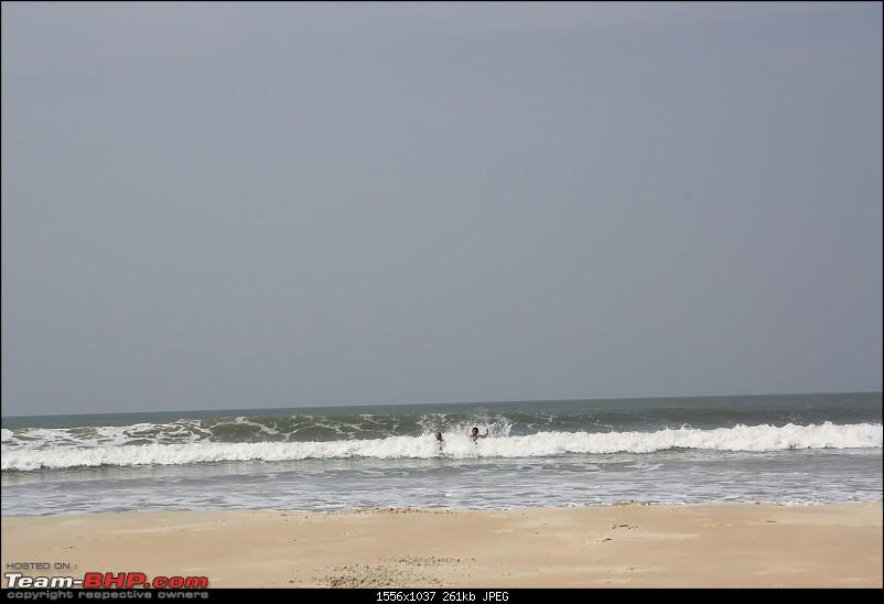 Return to Sun Surf Sand but no Sorpotel - Goa!-betal2.jpg
