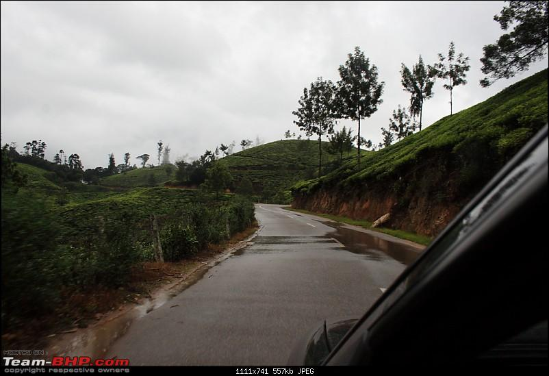 Getting drenched in Munnar (Bangalore to Munnar and Kannur)-img_1216_ed.jpg