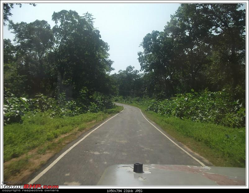 Rambling inside the forests of Jharkhand-3.jpg