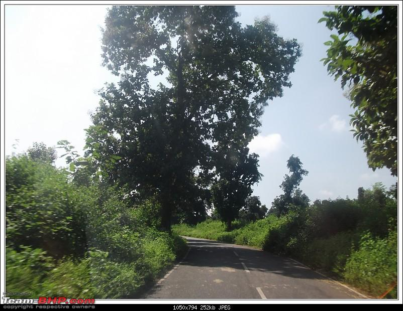 Rambling inside the forests of Jharkhand-6.jpg
