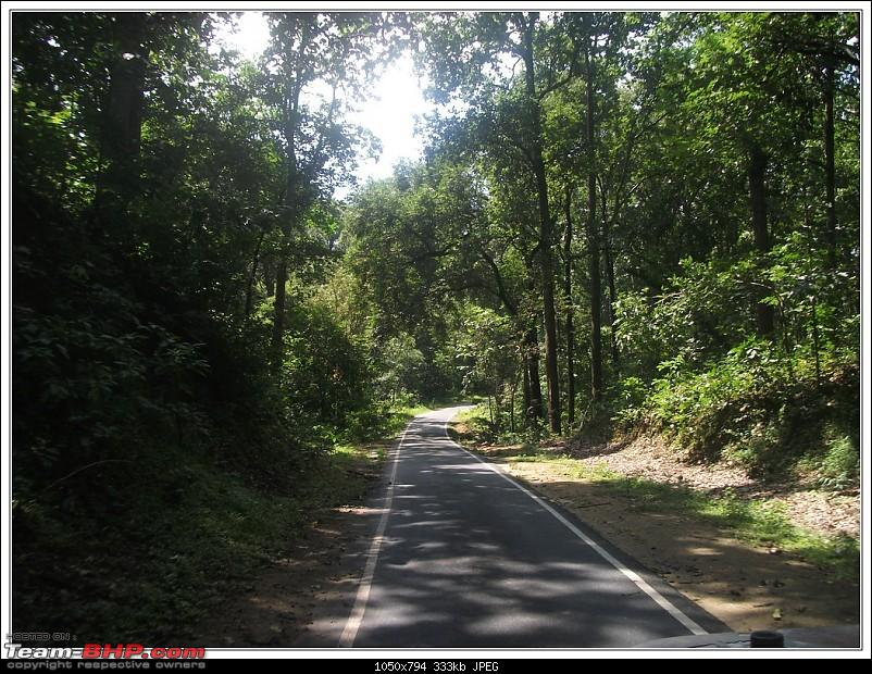 Rambling inside the forests of Jharkhand-22.jpg