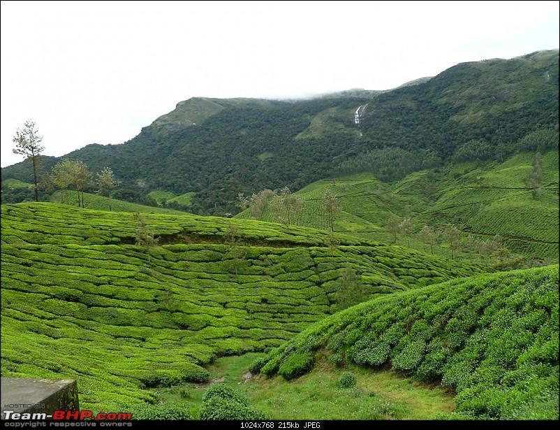Bangalore-Valparai-Munnar-Bangalore-p1000745.jpg