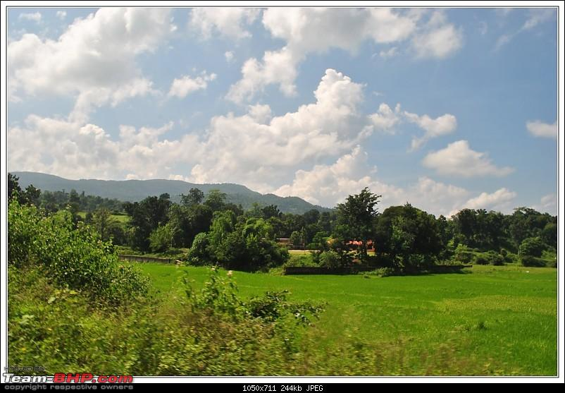 Rambling inside the forests of Jharkhand-59.jpg