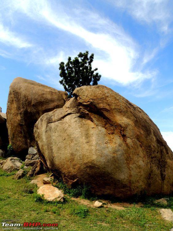 Name:  Madhugiri Fort_TBHP_Nov2012 072.jpg Views: 1855 Size:  94.8 KB