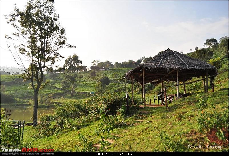 The Jet� learns to make cheese: A farmstay experience in the Nilgiris-dsc_0141.jpg
