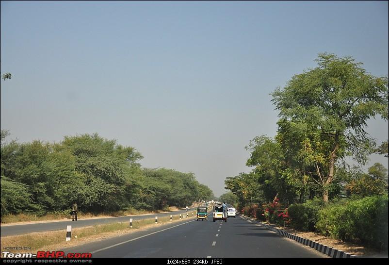 The Mumbai cheetah goes to greet the Sasan Gir Lion (A Gujarat travelogue)-dsc_0244.jpg