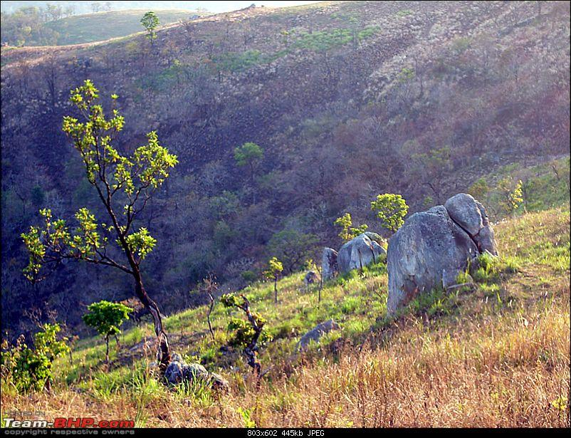 'Xing'ing around ! - Chembra Peak, Meenmutty waterfalls, Himavad Gopalaswamy betta.-33.jpg