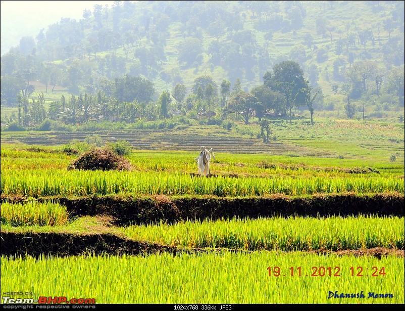 Report : Kochi - Kollur - Jog Falls - Chikmagalur - Mysore-14.jpg