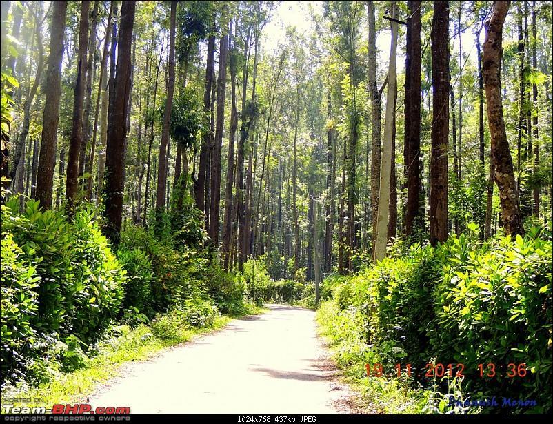 Report : Kochi - Kollur - Jog Falls - Chikmagalur - Mysore-16.jpg